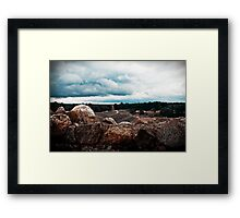 The View. Framed Print