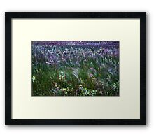 The Prairie Wind Painted The Picture Irwin State Nature Preserve  Framed Print