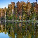 Autumn impression by Sergey Martyushev