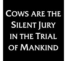 Cows are the Silent Jury in the Trial of Mankind Photographic Print