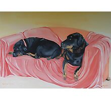 Rottweilers, Gertie and Willem on the sofa. Photographic Print