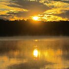 Sunrise on Spring Lake  by Edie  Young O'Bryant