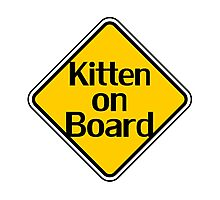 Baby Kitten On Board - Cat Sticker Photographic Print