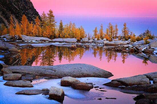 Pink Gnome Tarn by Inge Johnsson