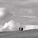 people on Chesil Beach by lukasdf