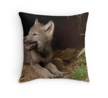 There is Nothing Like Home Throw Pillow