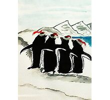 Holiday Penguin, watercolor Photographic Print