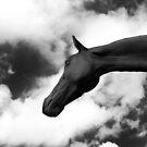 Horse (15-5) by Raymond Kerr