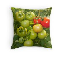 Green and red tomatoes Throw Pillow