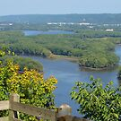 The Mississippi River by lorilee