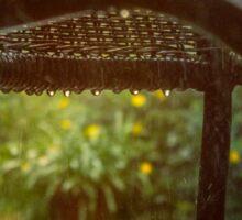 Autumn Rain photography Sticker