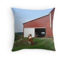 The Cow Barn Throw Pillow