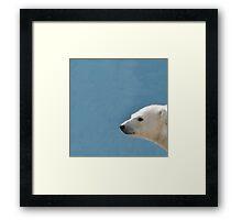 White Polar Bear Framed Print