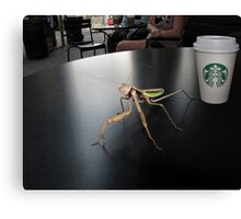 Hay! I'm Trying To Have a Coffee Here! Canvas Print