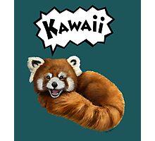 Cute Kawaii Red Panda Photographic Print