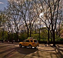 New York - A Place of Movement - HDR by Rosestone