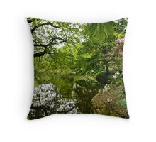 Pemberly Green - HDR Throw Pillow