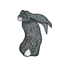 Scared Little Hare Photographic Print