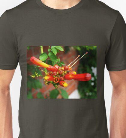 Campsis Tagliabuana Unisex T-Shirt