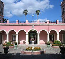 Palacio San Jose, Entre Rios by AppleAndThorn