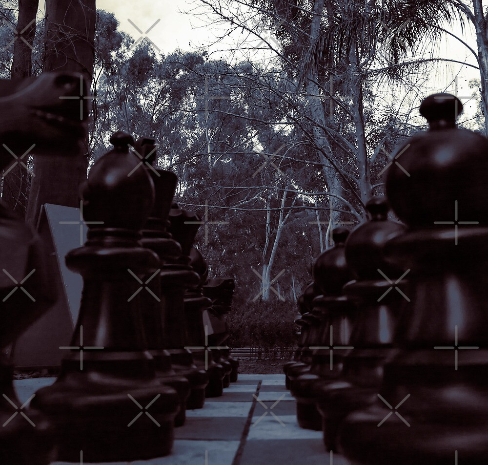 Your Move - Black Chess Pieces by Sandra Chung