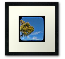 Blue 1 Framed Print