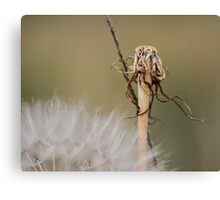 Stands Alone Canvas Print