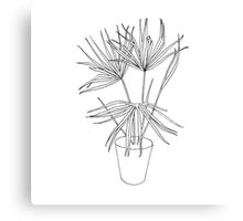 Palm Sketch Canvas Print