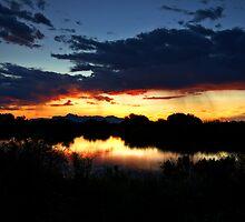 Dawn's First Light  by Saija  Lehtonen