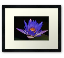 Tina and the damselfly Framed Print