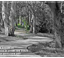 ~ New Horizon ~ (Haiku) by Donna Keevers Driver