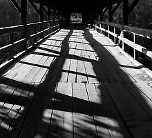 Bridge over the River Sava in black and white by Ian Middleton