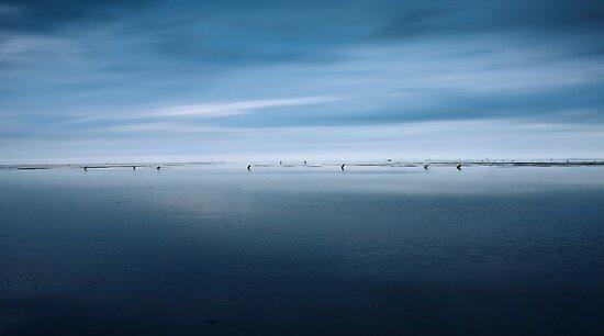 Wadden Sea Panorama by Photofreaks