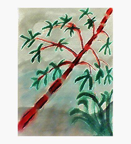 Bambo at sunset, watercolor Photographic Print