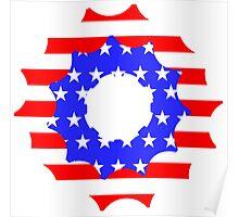 USA pinion Poster