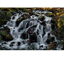 The Gathering ~ Oregon Cascades ~ Photographic Print