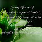 Affirmation - New Life by TriciaDanby