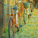 Two Bicycles by Tara  Turner