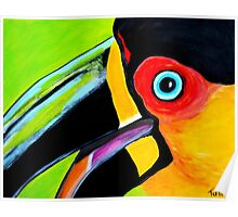 Toucan close up Poster