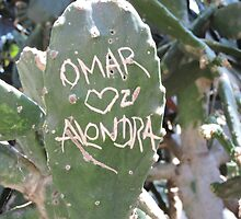 Omar and Alondra Forever by Elizabeth Freeman