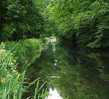 The Grand Western Canal  by EventPhotos