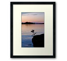Lonesome Flower 2 - Lunenburg, Nova Scotia Framed Print