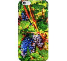 wine vintage vineyard iPhone Case/Skin