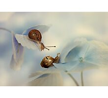 So happy together :) Photographic Print