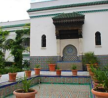 The Great Mosque of Paris Garden by Elena Skvortsova