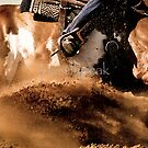 Down in the Dirt by Emily Peak