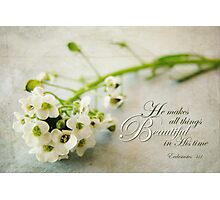 All Things Beautiful (Card) Photographic Print