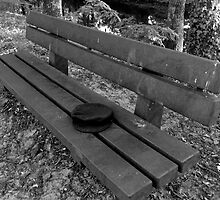 Hat On A Bench by MARKTHEHAT