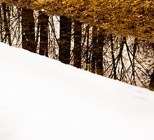 Reflection - Melting of snow. by Dennis Pal