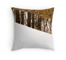 Reflection - Melting of snow. Throw Pillow